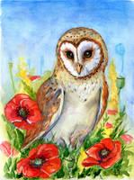 Owl by ElizavetaS