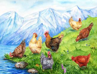 Chicken by ElizavetaS