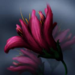 flower by lindelokse