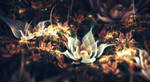 Lotus by lindelokse