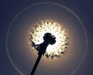 I wish I were a sun by GaelleNHarper