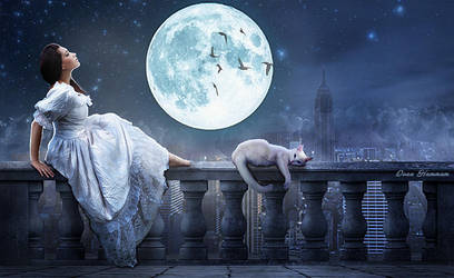 Moon by DoaaHammam