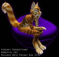 KZK Domestic Cats by DarkEcoKat