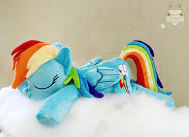 Brand New Sleeping Rainbow Dash Plushie! BronyCon by JanellesPlushies