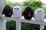 Deathly Hallows Owls for Otakon 2015! by JanellesPlushies