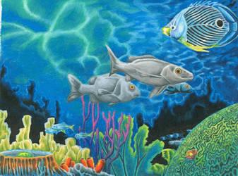 Coral Reef by jmsnooks
