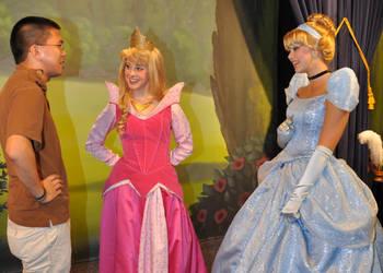 Cinderella's New Dress by SantosPhillipCarlo