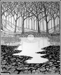 Woodland pond by PENANDINKDRAWINGS