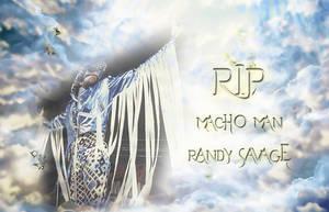 R.I.P. Macho Man Randy Savage by scrik