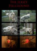 The Jersey Hellhound by Knuxtiger4