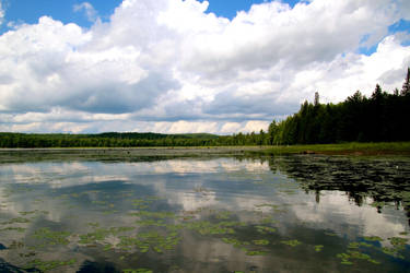view from my canoe by minamiko