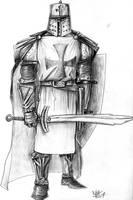 Templar Knight 3 by nuknueve