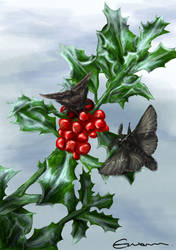 Winter Wings by Malhyanth