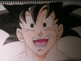 Goku by Zanerkand