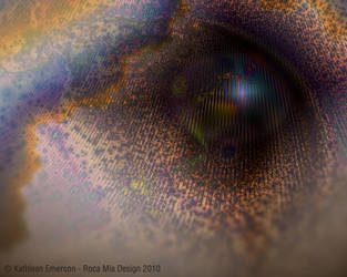 Visionary by rocamiadesign