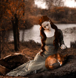 red fox by midnightmind