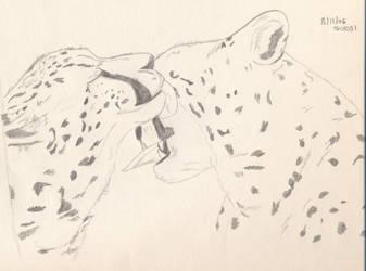 Cheetah Kisses by Okibi-Kris