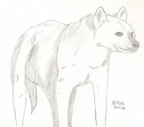 Hyena No. 2 by Okibi-Kris
