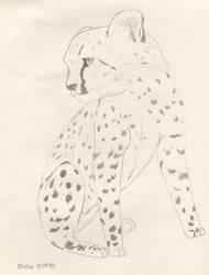 Lil' Cheetah by Okibi-Kris