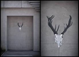 deer head by MeerSAUzburg