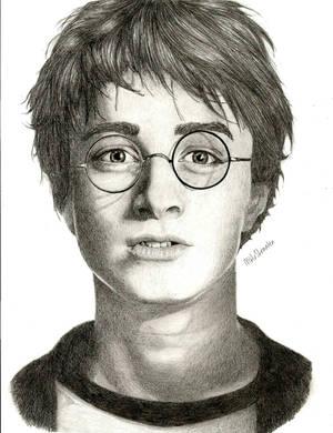 Harry Potter by melissastraaten