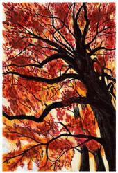 autumn by szog88