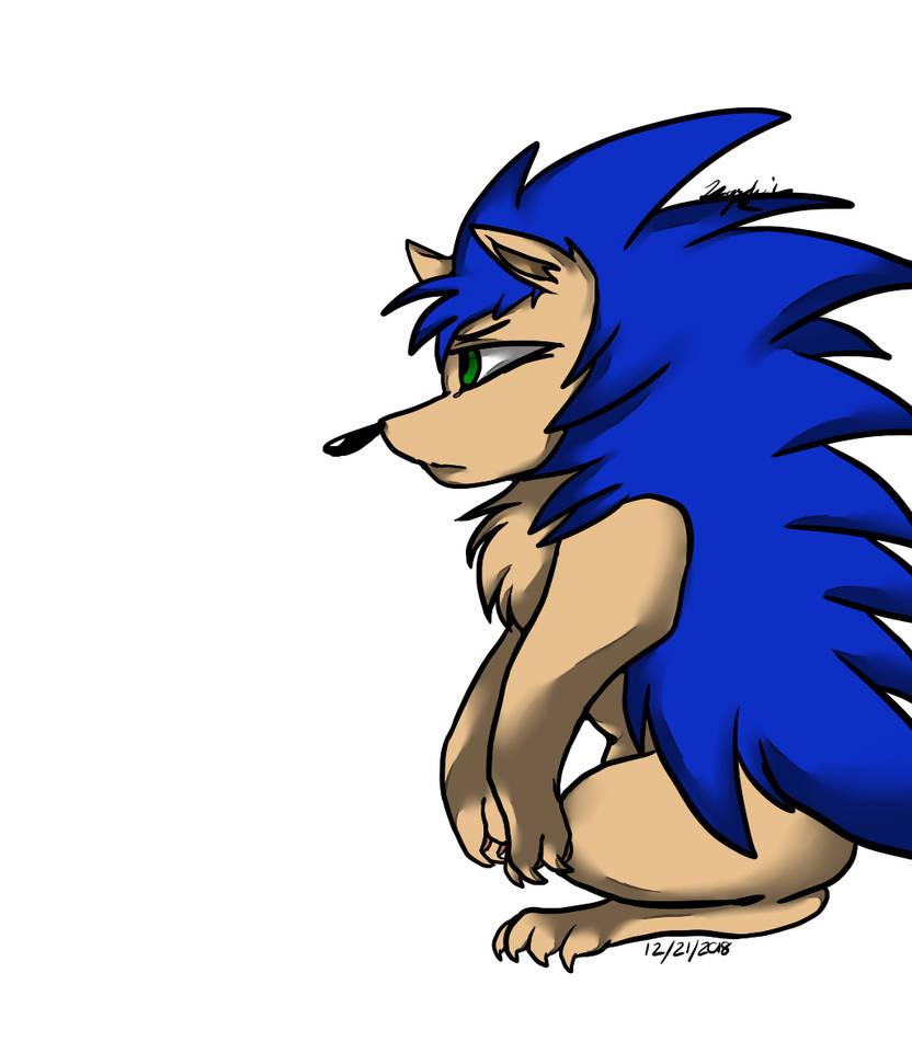 Hedgehog by Arcticwolf39905