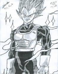 Vegeta {Super Saiyan God} by Mirai-Gohan