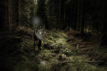 Ossi Spooky by ppan09