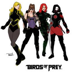 Birds of Prey by tsbranch
