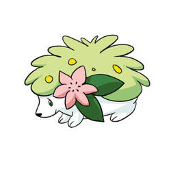 Shaymin by ItsOKaleigh