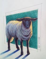 Sheep by CrazyEdzia