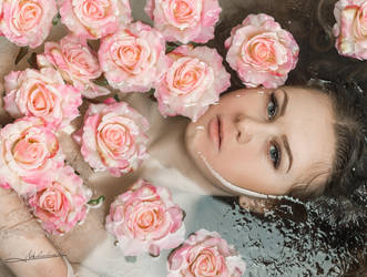 The rose of water by Mishkina