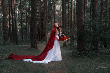#  Little Red Riding Hood by Mishkina