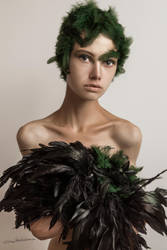 The bird by Mishkina