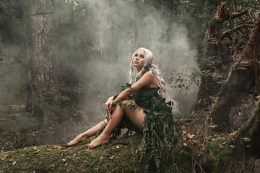 # The elf by Mishkina