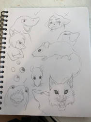 Animal Practice by ReesyTaters