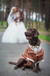 Labrador Marcelle - Groom's Best Man by ShakilovNeel
