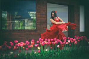 Flamenco Tulips by ShakilovNeel