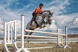 Concours Hippique by ShakilovNeel