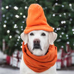 Orange Winter Look by ShakilovNeel