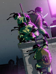 Teenage Mutant Ninja Tortoises by darrenrawlings