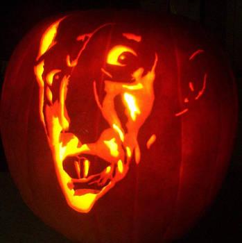Nosferatu by pumpkinsbylisa