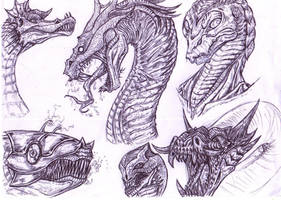 Dragon Head Sketches by ForeverZeroDragon