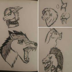 Ink Sketches by Dakoshistar