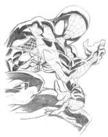 Spiderman by SK-DAN