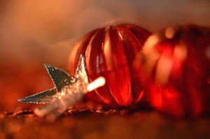 Pumpkins and leaves by marjarah