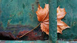 Copper and turquoise 2 by marjarah