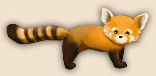 Red Panda 1 by jaz-lyn