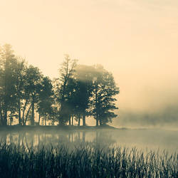 sunday II by vonrubinstein